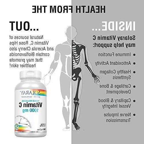 Rose Hips Acerola | Timed-Release Formula | Immune Support Supplement | 250