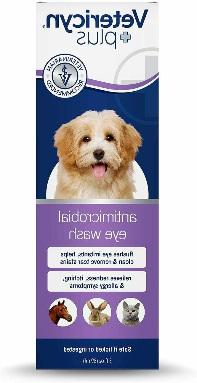 DOGS DOG EYE INFECTION